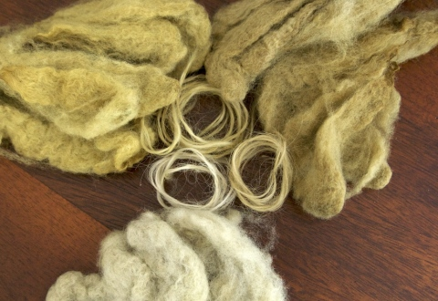 Cormo fleece and handspun Lincoln Longwool