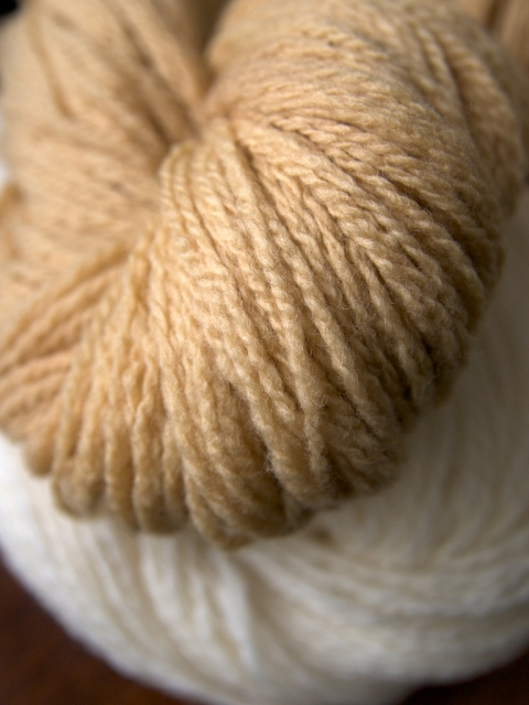 hand spun yarn dyed with carrot top